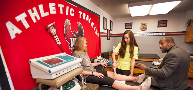 Students learn from a Kinesiology professor about using an ultrasound device